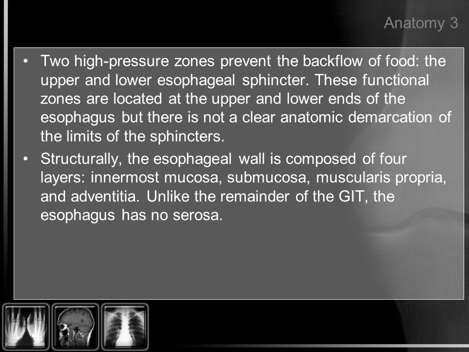 Anatomy 3 Two high-pressure zones prevent the backflow of food: the upper and lower esophageal sphincter. These functional zones are located at the up