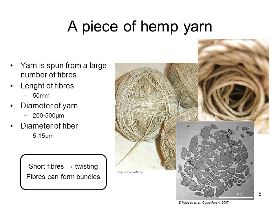 5 A piece of hemp yarn Yarn is spun from a large number of fibres Lenght of fibres –50mm Diameter of yarn –200-500µm Diameter of fiber –5-15µm tinyurl.com/n675jn tinyurl.com/muxhkq B Madsen et.