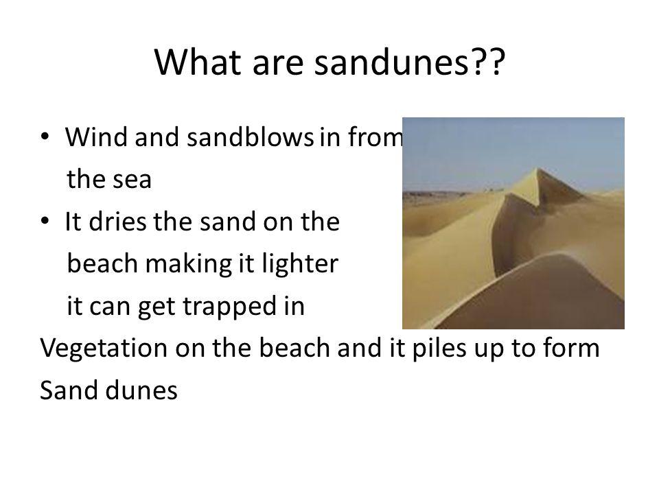What are sandunes .