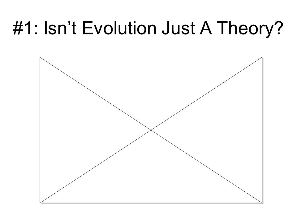 #1: Isn't Evolution Just A Theory?