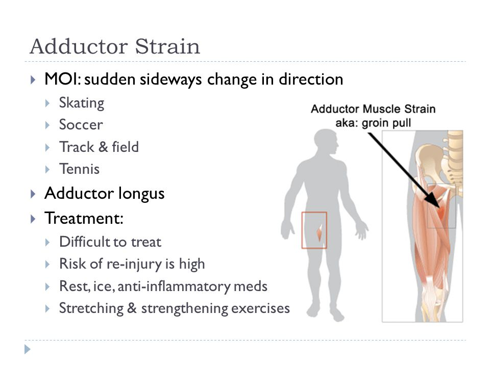Adductor Strain  MOI: sudden sideways change in direction  Skating  Soccer  Track & field  Tennis  Adductor longus  Treatment:  Difficult to treat  Risk of re-injury is high  Rest, ice, anti-inflammatory meds  Stretching & strengthening exercises