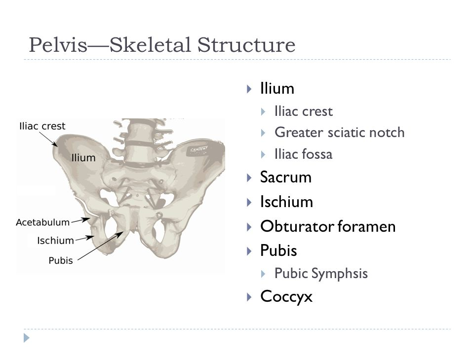 Bursitis  Most frequent location is over lateral hip  Greater trochanteric bursitis  Tenderness lateral hip  Made worse by walking, running, or twisting hip  Insufficient stretching or warm-up  Treatment:  Limit activity  Stretching exercises  Ice & ice massage  NSAIDs