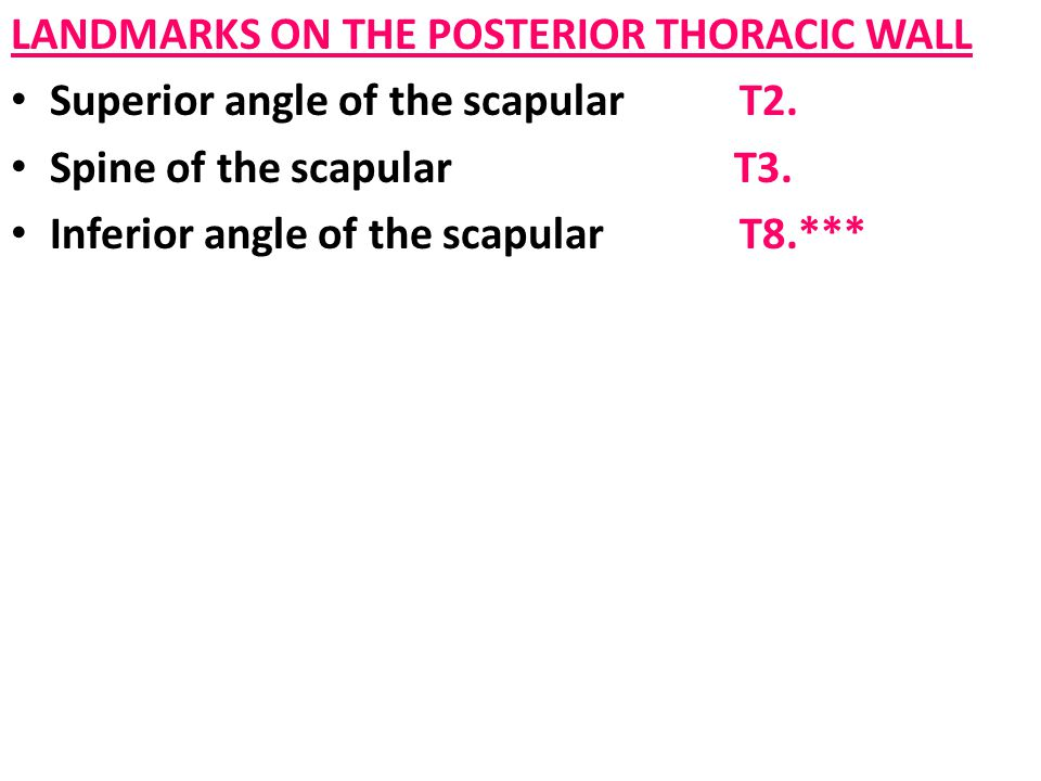 LANDMARKS ON THE POSTERIOR THORACIC WALL Superior angle of the scapularT2. Spine of the scapular T3. Inferior angle of the scapular T8.***
