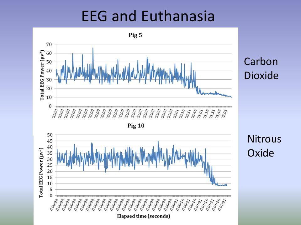 EEG and Euthanasia Carbon Dioxide Nitrous Oxide
