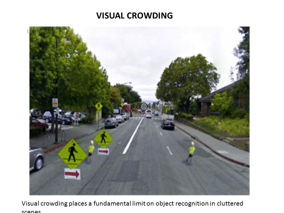 Visual crowding places a fundamental limit on object recognition in cluttered scenes.