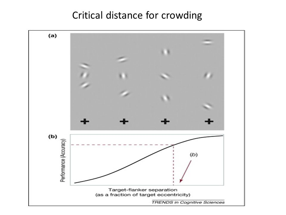 Critical distance for crowding