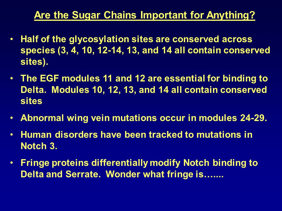 Are the Sugar Chains Important for Anything.