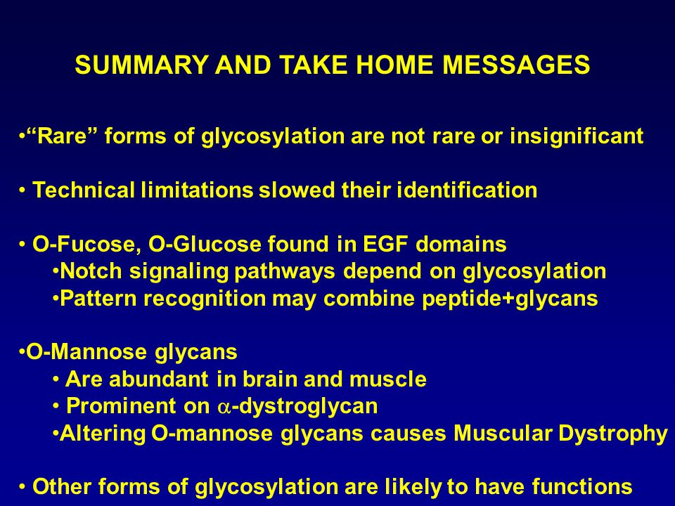 SUMMARY AND TAKE HOME MESSAGES Rare forms of glycosylation are not rare or insignificant Technical limitations slowed their identification O-Fucose, O-Glucose found in EGF domains Notch signaling pathways depend on glycosylation Pattern recognition may combine peptide+glycans O-Mannose glycans Are abundant in brain and muscle Prominent on  -dystroglycan Altering O-mannose glycans causes Muscular Dystrophy Other forms of glycosylation are likely to have functions