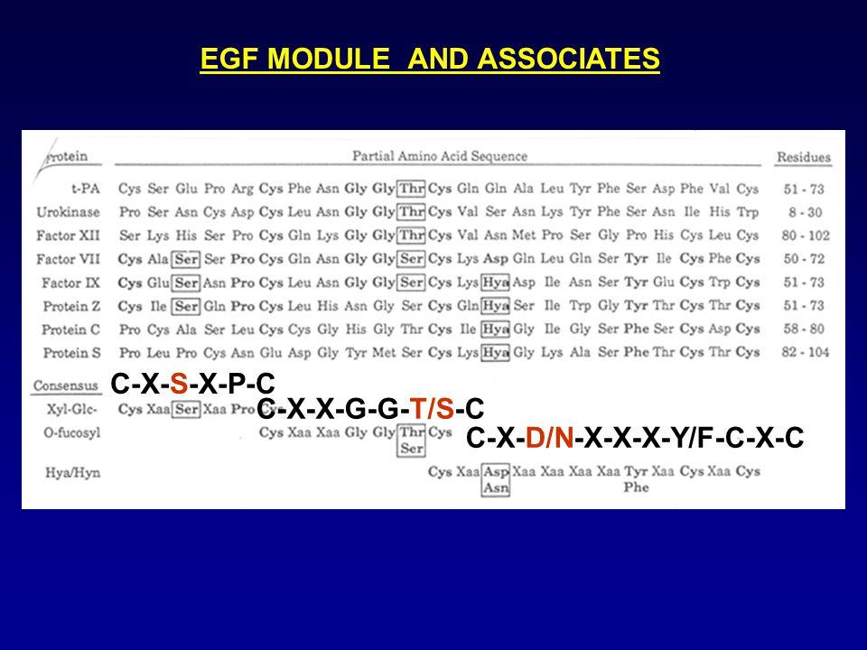 C-X-D/N-X-X-X-Y/F-C-X-C C-X-X-G-G-T/S-C C-X-S-X-P-C EGF MODULE AND ASSOCIATES