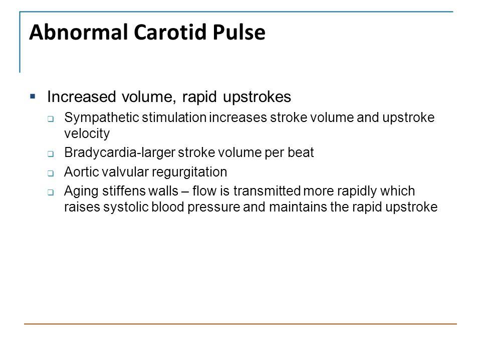 Abnormal Carotid Pulse  Increased volume, rapid upstrokes  Sympathetic stimulation increases stroke volume and upstroke velocity  Bradycardia-large