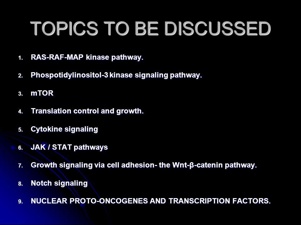 RAS-RAF-MAP kinase pathway.