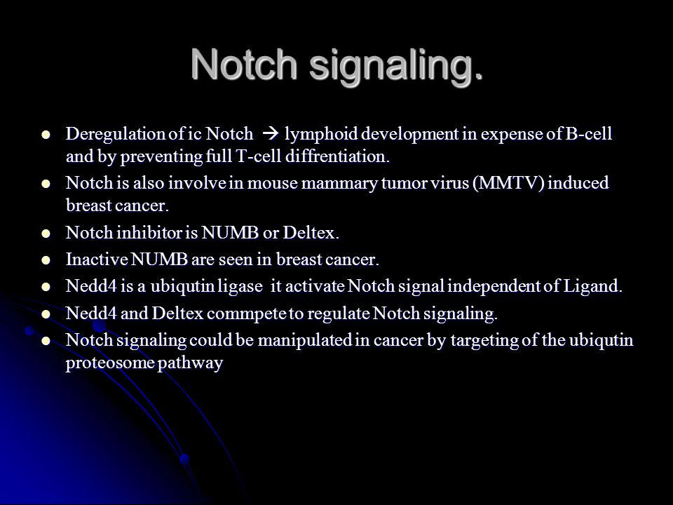 Deregulation of ic Notch  lymphoid development in expense of B-cell and by preventing full T-cell diffrentiation. Deregulation of ic Notch  lymphoid