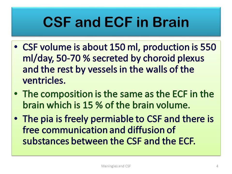 CSF and ECF in Brain Meningies and CSF4