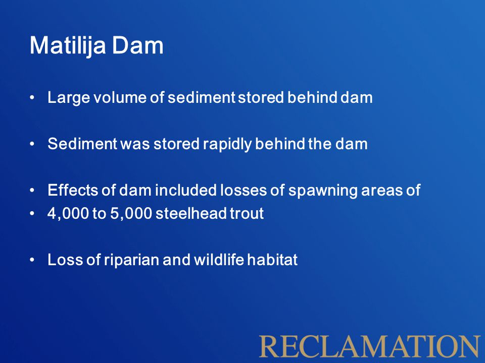 Matilija Dam Large volume of sediment stored behind dam Sediment was stored rapidly behind the dam Effects of dam included losses of spawning areas of 4,000 to 5,000 steelhead trout Loss of riparian and wildlife habitat