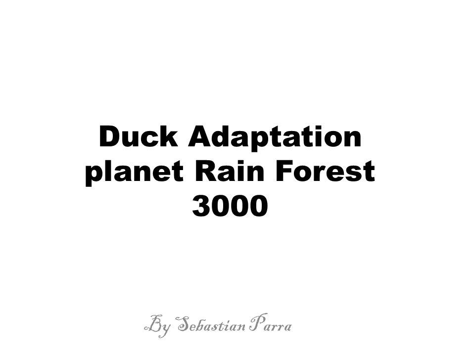 Duck Adaptation planet Rain Forest 3000 By Sebastian Parra