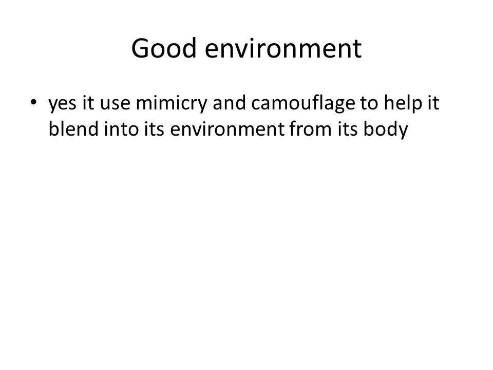 Good environment yes it use mimicry and camouflage to help it blend into its environment from its body