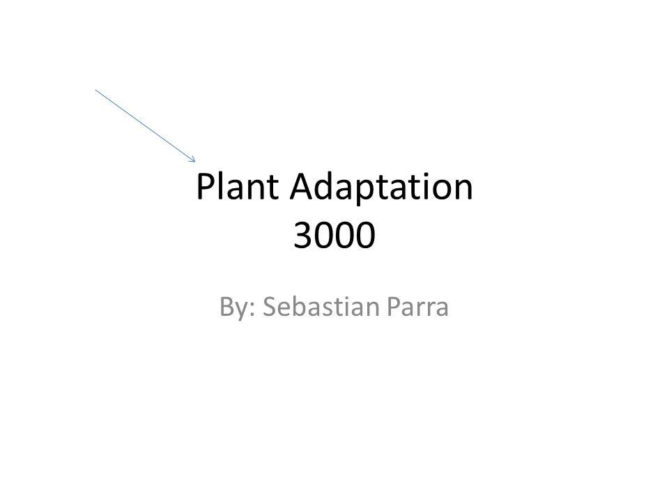 Plant Adaptation 3000 By: Sebastian Parra