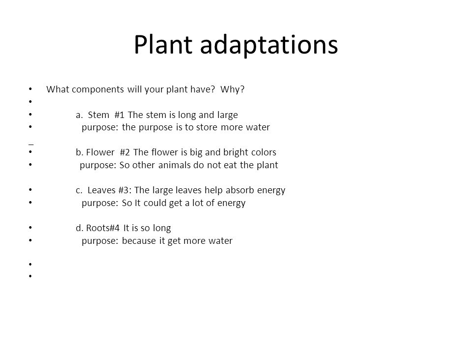 Plant adaptations What components will your plant have? Why? a. Stem #1 The stem is long and large purpose: the purpose is to store more water _ b. Fl