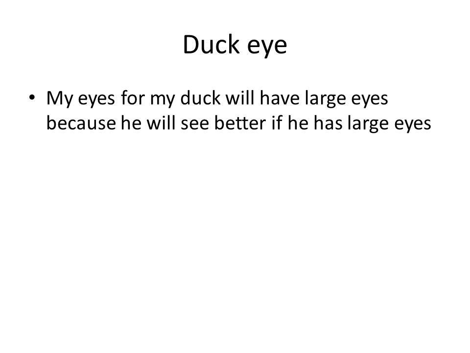 Duck eye My eyes for my duck will have large eyes because he will see better if he has large eyes