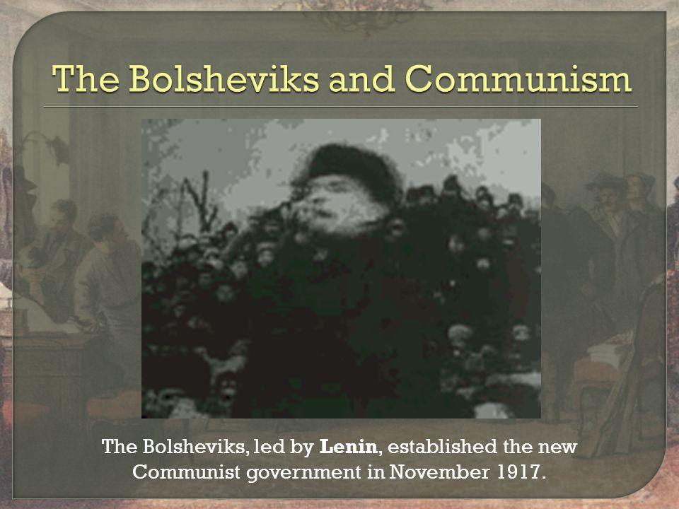 The Bolsheviks, led by Lenin, established the new Communist government in November 1917.