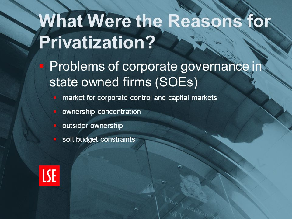 What Were the Reasons for Privatization.