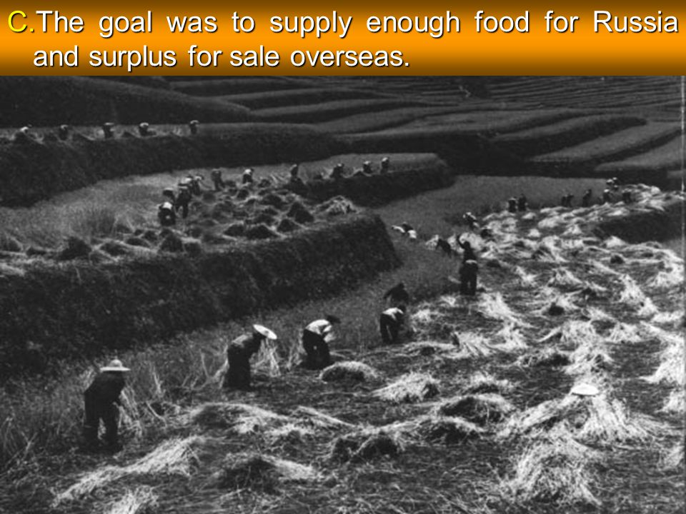 C.The goal was to supply enough food for Russia and surplus for sale overseas.