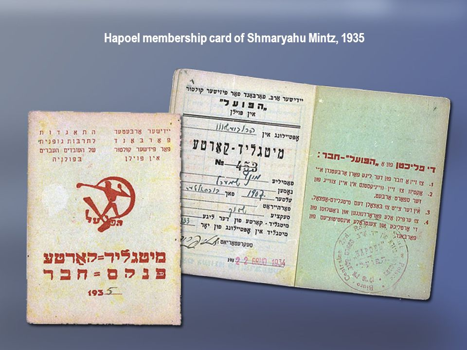 Hapoel membership card of Shmaryahu Mintz, 1935