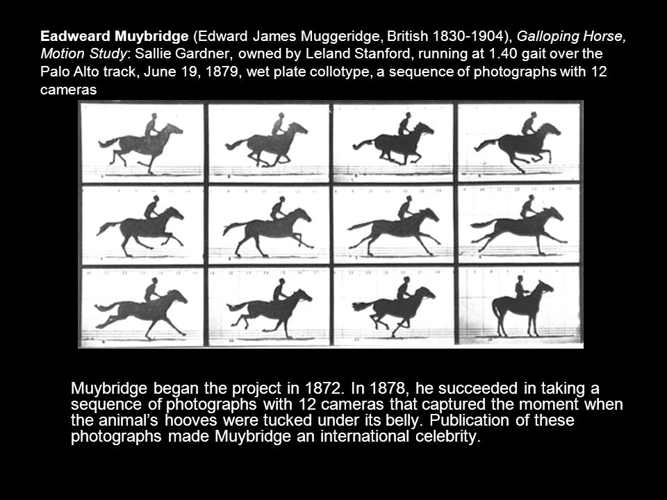Eadweard Muybridge (Edward James Muggeridge, British 1830-1904), Galloping Horse, Motion Study: Sallie Gardner, owned by Leland Stanford, running at 1.40 gait over the Palo Alto track, June 19, 1879, wet plate collotype, a sequence of photographs with 12 cameras Muybridge began the project in 1872.