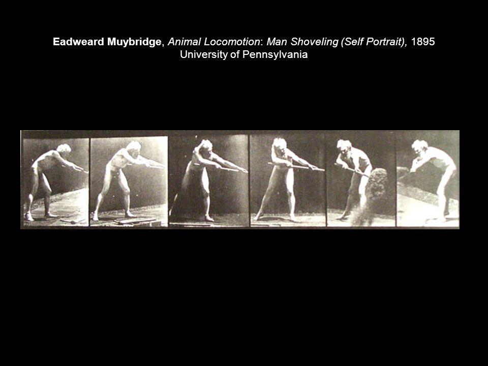 Eadweard Muybridge, Animal Locomotion: Man Shoveling (Self Portrait), 1895 University of Pennsylvania