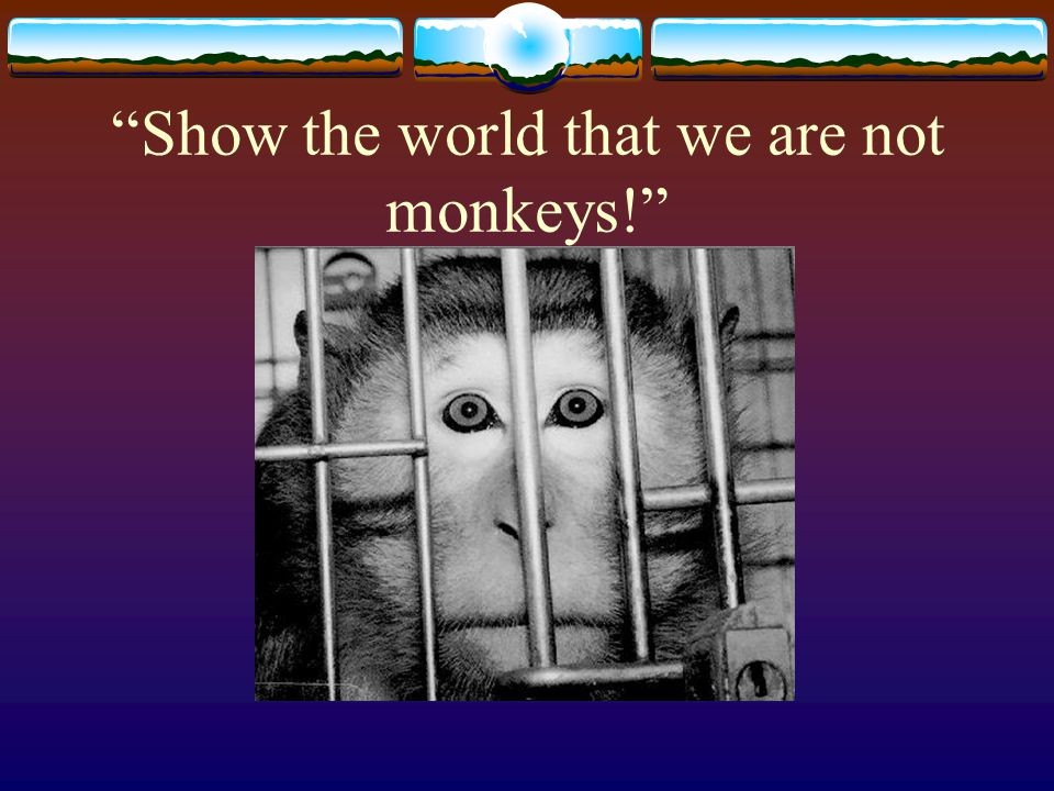 Show the world that we are not monkeys!