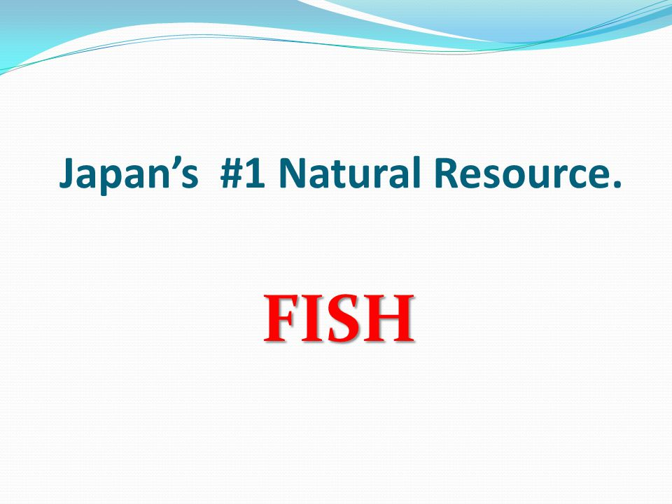 Japan's #1 Natural Resource. FISH