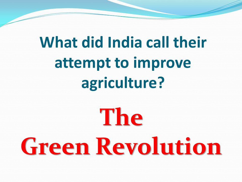 What did India call their attempt to improve agriculture The Green Revolution