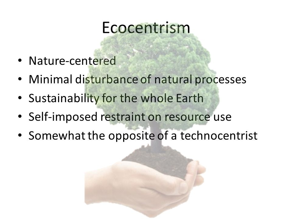 Ecocentrism Nature-centered Minimal disturbance of natural processes Sustainability for the whole Earth Self-imposed restraint on resource use Somewhat the opposite of a technocentrist
