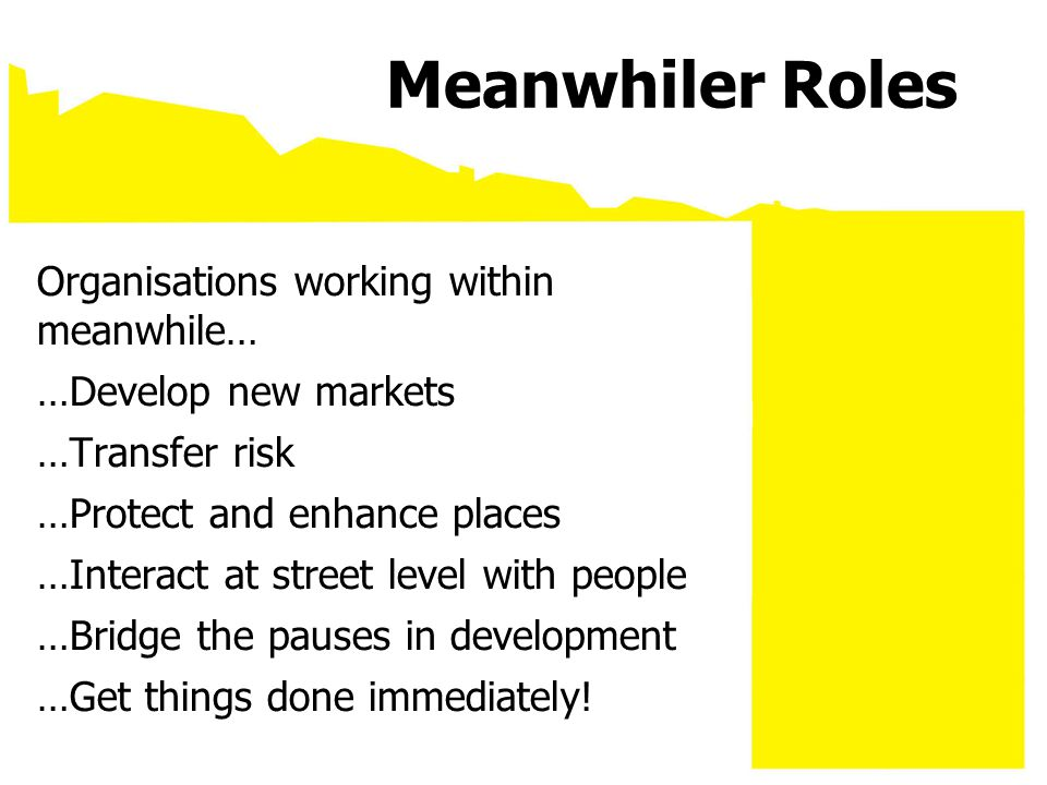Meanwhiler Roles Organisations working within meanwhile… …Develop new markets …Transfer risk …Protect and enhance places …Interact at street level wit