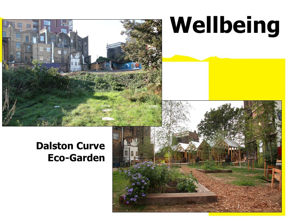Dalston Curve Eco-Garden Wellbeing