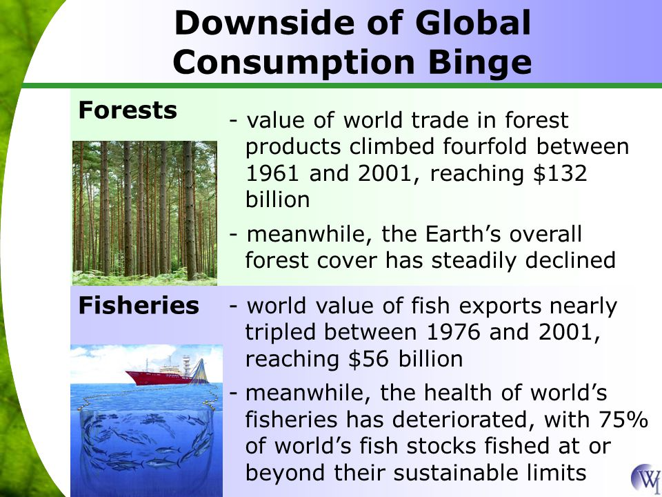 Downside of Global Consumption Binge Forests - value of world trade in forest products climbed fourfold between 1961 and 2001, reaching $132 billion - meanwhile, the Earth's overall forest cover has steadily declined Fisheries - world value of fish exports nearly tripled between 1976 and 2001, reaching $56 billion -meanwhile, the health of world's fisheries has deteriorated, with 75% of world's fish stocks fished at or beyond their sustainable limits