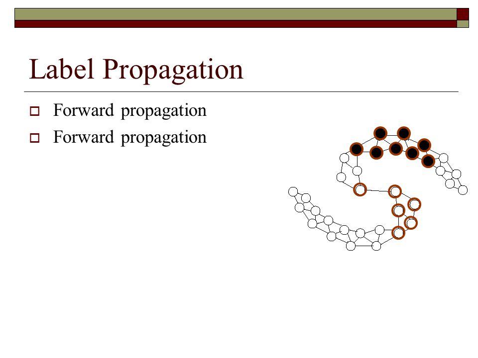 Label Propagation  Forward propagation