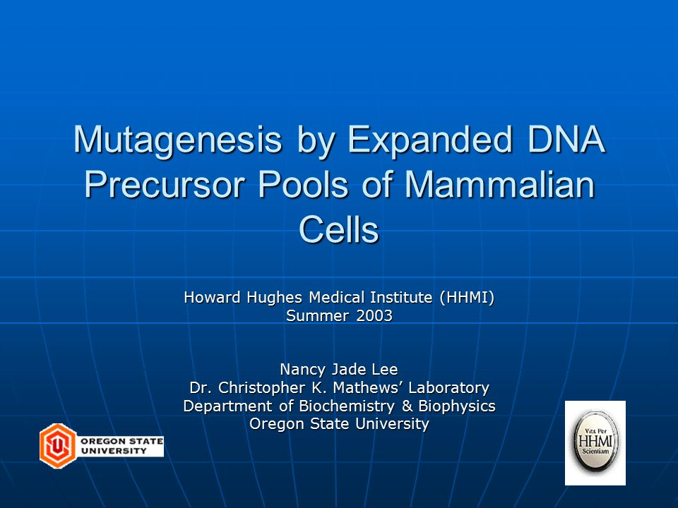 Mutagenesis by Expanded DNA Precursor Pools of Mammalian Cells Howard Hughes Medical Institute (HHMI) Summer 2003 Nancy Jade Lee Dr.