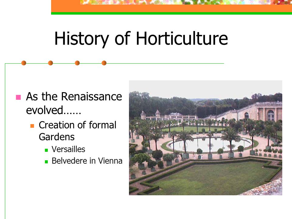 History of Horticulture As the Renaissance evolved…… Creation of formal Gardens Versailles Belvedere in Vienna