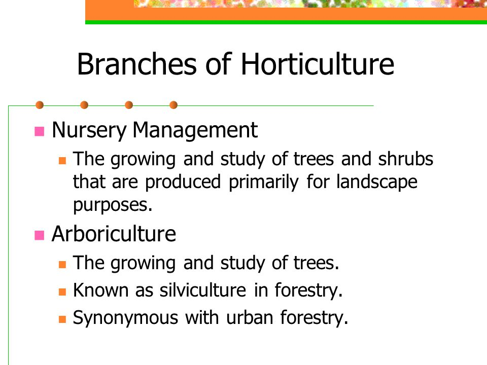 Branches of Horticulture Nursery Management The growing and study of trees and shrubs that are produced primarily for landscape purposes. Arboricultur
