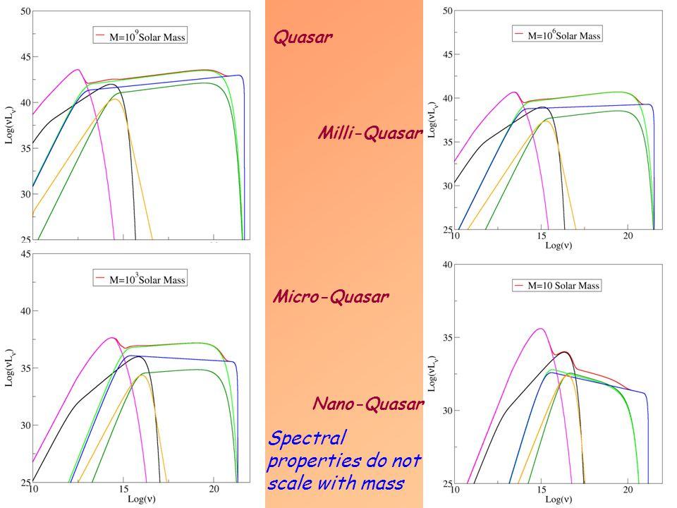 Quasar Micro-Quasar Milli-Quasar Nano-Quasar Spectral properties do not scale with mass
