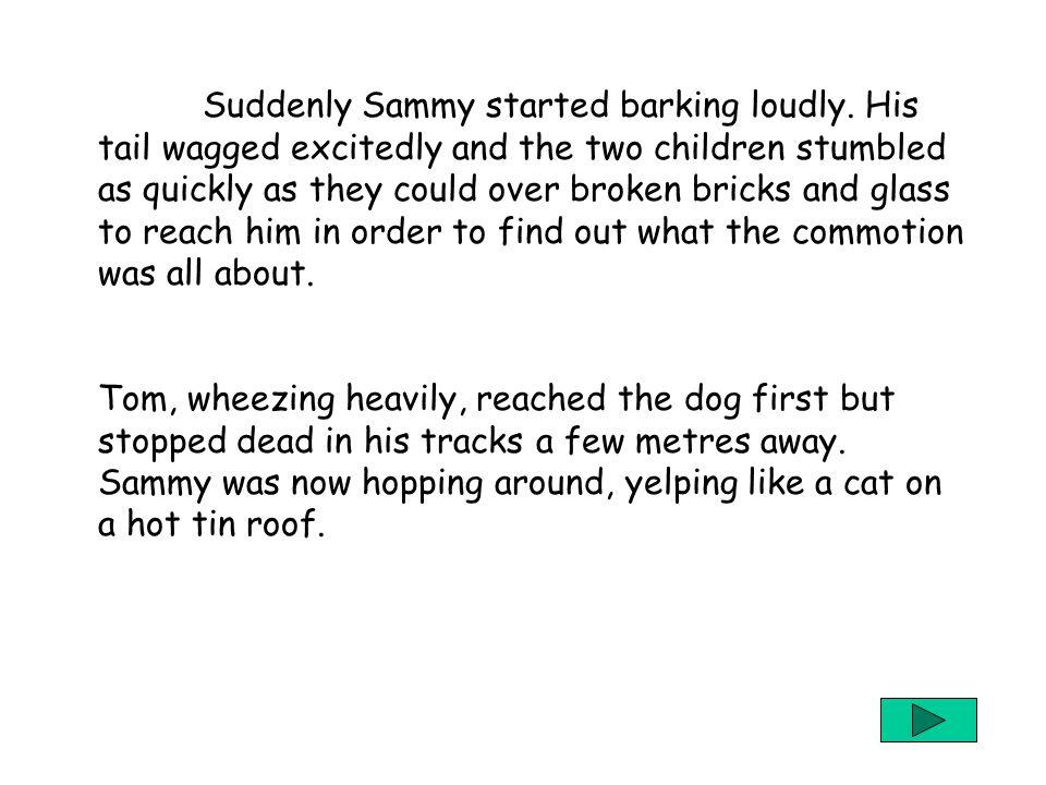 6 Suddenly Sammy started barking loudly.