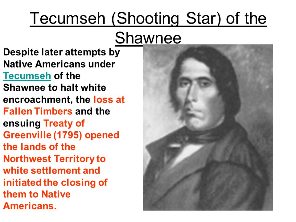 Despite later attempts by Native Americans under Tecumseh of the Shawnee to halt white encroachment, the loss at Fallen Timbers and the ensuing Treaty