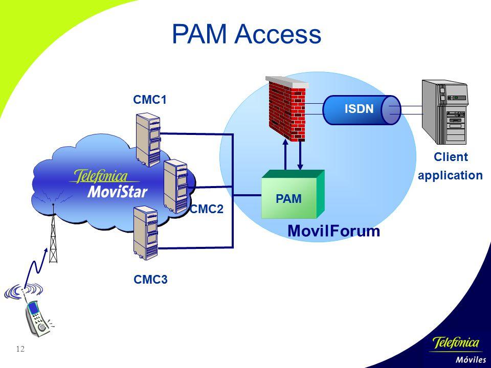 12 Client application ISDN CMC1 CMC2 CMC3 PAM Access MovilForum PAM