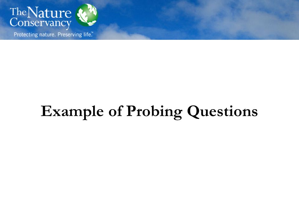 Example of Probing Questions