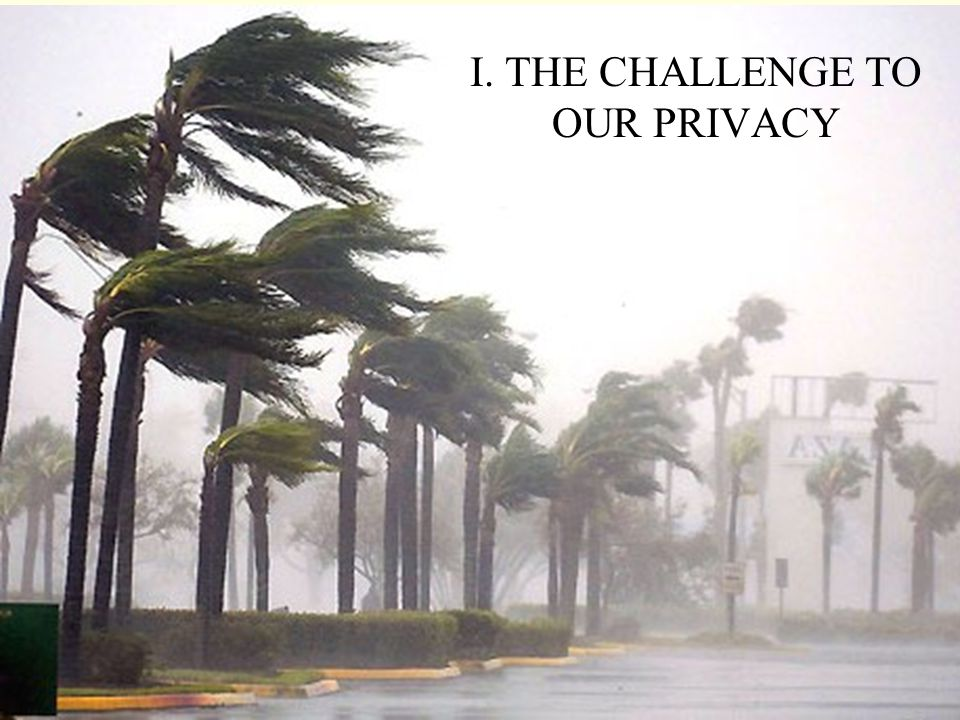 I. THE CHALLENGE TO OUR PRIVACY