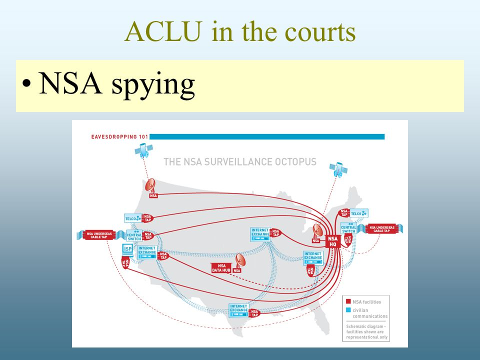 ACLU in the courts NSA spying