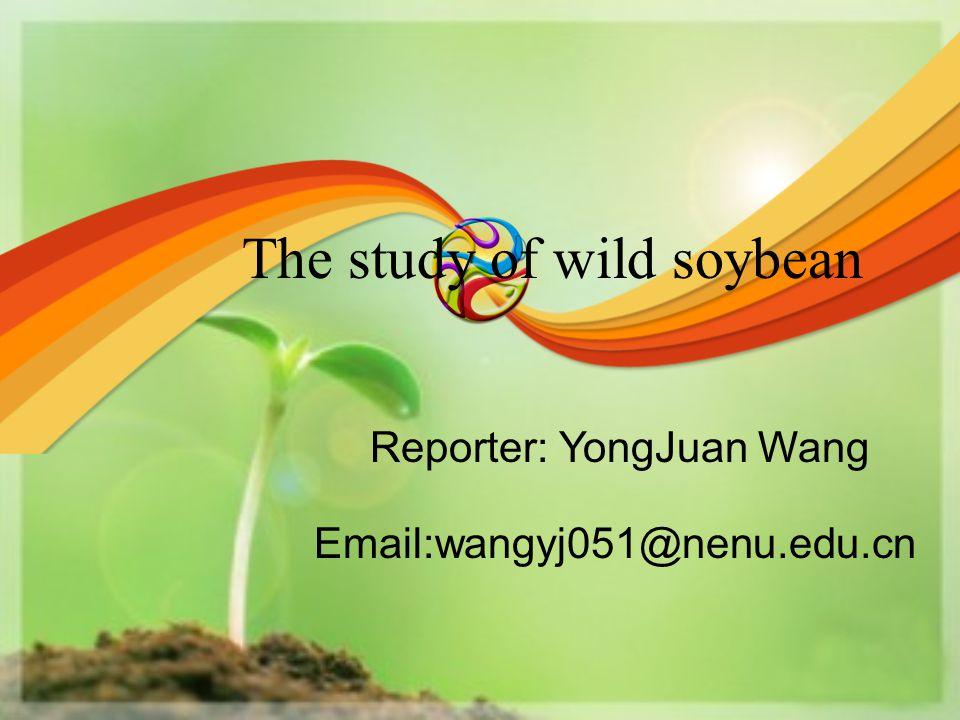 The study of wild soybean Reporter: YongJuan Wang Email:wangyj051@nenu.edu.cn