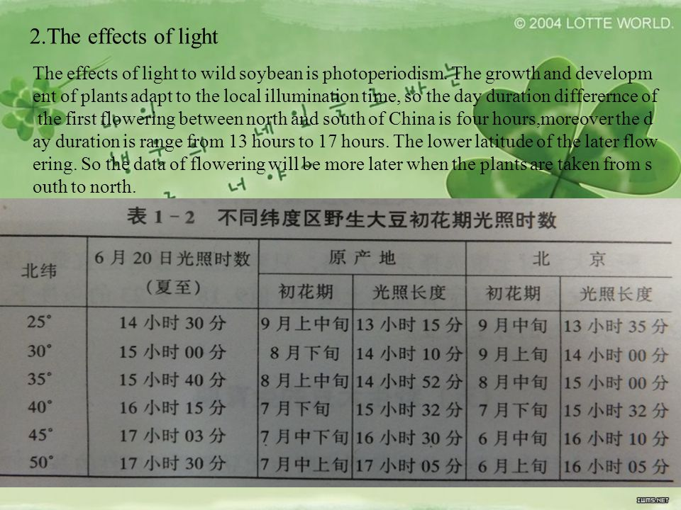 2.The effects of light The effects of light to wild soybean is photoperiodism. The growth and developm ent of plants adapt to the local illumination t
