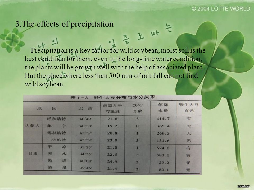 3.The effects of precipitation Precipitation is a key factor for wild soybean, moist soil is the best condition for them, even in the long-time water condition, the plants will be growth well with the help of associated plant.